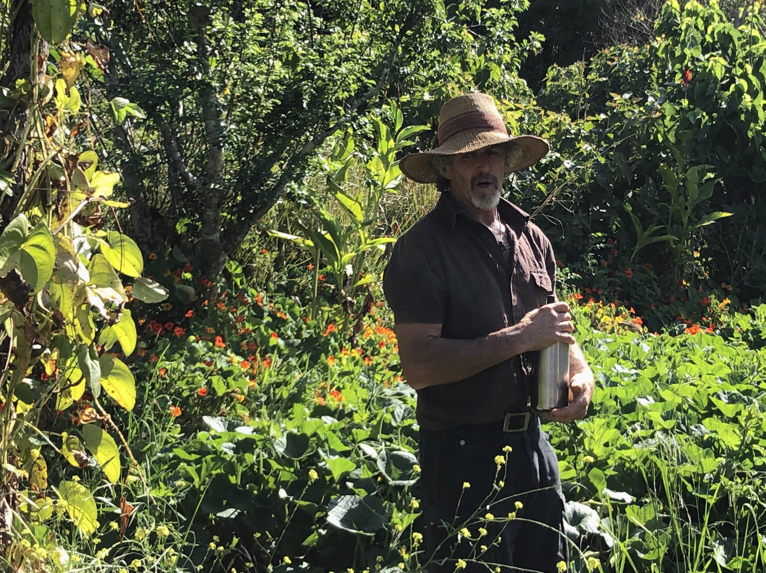 Residential 2 week Permaculture Design Certificate Course