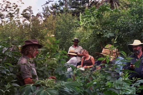 Residential Permaculture Design Certificate course